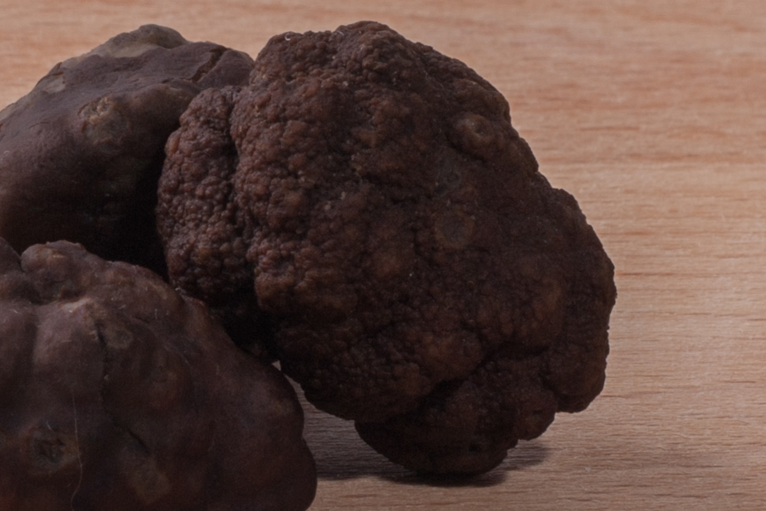 FRESH FALL TRUFFLES